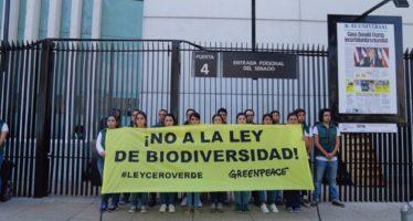 Organismos mexicanos de la sociedad civil denuncian: Madrugan Grupo Salinas y Partido Verde con Ley de Biodiversidad