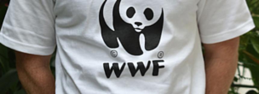 WWF: Plaza disponible en La Paz, BCS como Coordinador Senior del Programa de Océanos