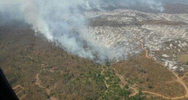 Decremento en superficie afectada por incendios forestales