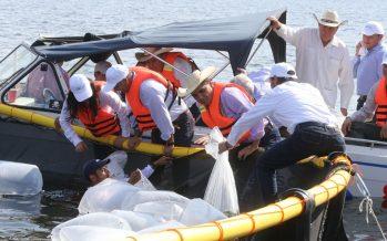 Gobernador y Sagarpa arrancaron criadero de tilapia en Presa de Infiernillo