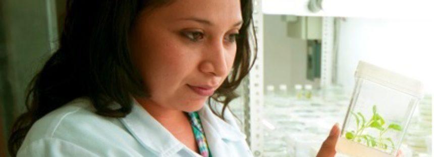El Centro de Investigación Científica de Yucatán es líder en investigación en la región peninsular