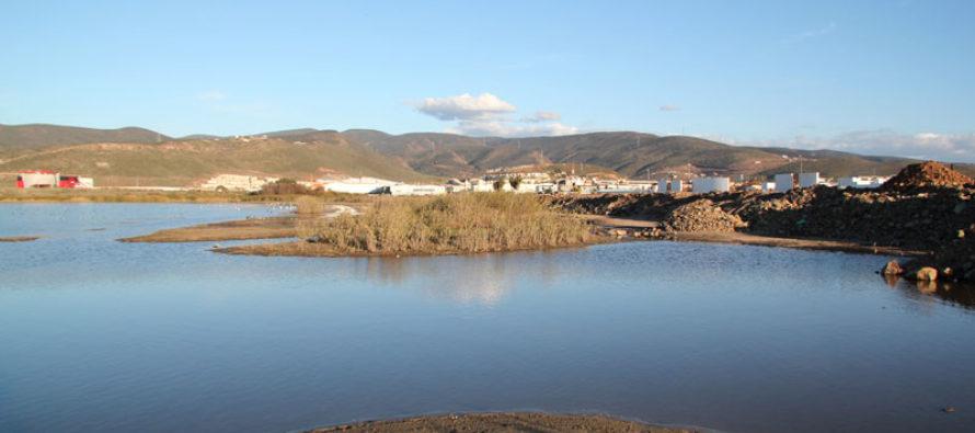 Características ambientales de La Lagunita de El Ciprés, Mpio. de Ensenada, Baja California y las amenazas a su conservación