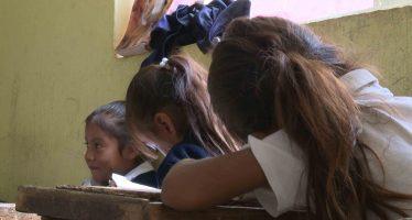 Humo de quema de leña y pesticidas, afectan funciones renales de niños de Jalisco