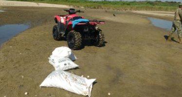 Recuperan y siembran 2,750 huevos de tortuga golfina (Lepidochelys olivacea) Playa de Escobilla que iban a comercializarse