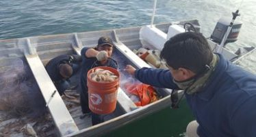 Detienen a cuatro personas por pesca ilegal en el Alto Golfo de México
