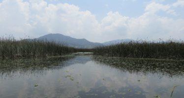 Día Mundial de los Humedales: 2 de febrero, para hacer conciencia ambiental