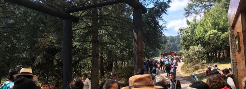 Incremento en la afluencia turística en el País de la Monarca