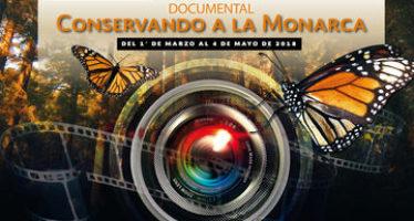 Abierto Concurso de Cortometraje Documental: Conservando a la Monarca