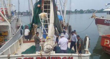 Aprueba gobierno estadounidense programa de protección de tortugas marinas con DET en Veracruz y Tamaulipas