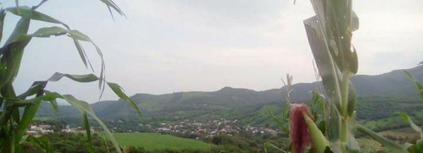 Primera jornada académico-cultural del municipio de Turicato