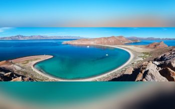 El Alto Golfo de California res una historia de crisis ambiental debido a actividades humanas
