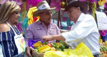 60 por ciento de la guayaba del país, es producida en Michoacán