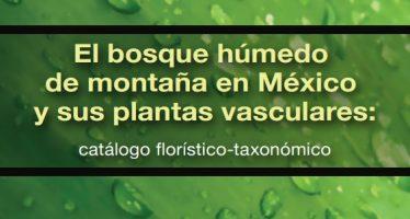 El bosque húmedo de montaña en México y sus plantas vasculares: catálogo florístico-taxonómico