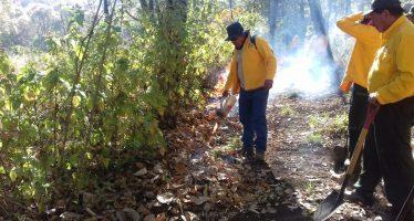 Combaten tres órdenes de gobierno incendios forestales en Michoacán