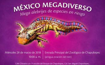 México megadiverso: mega alebrijes de especies en riesgo