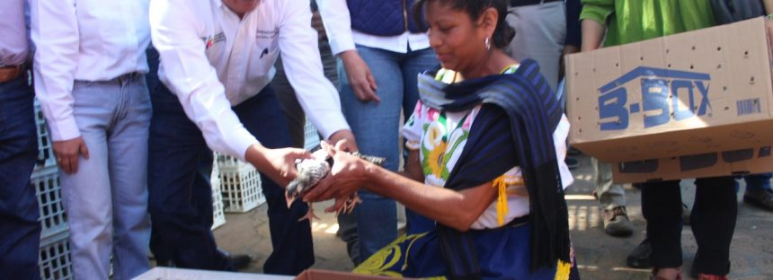 Entrega Sedrua 545 paquetes de Sí Produzco en Pátzcuaro y Tzintzuntzan