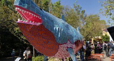 ¡Alebrijes en riesgo de extinción! Muestra México Megadiverso en el zoológico de Chapultepec en la CDMX