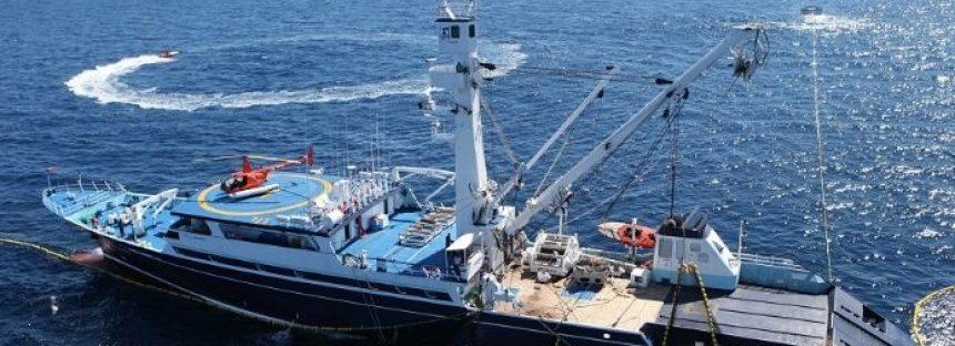 Las zonas de refugio pesquero son esenciales para el manejo pesquero y recuperación de las especies