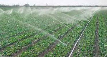 Tecnifican el riego de 663 hectáreas en José Sixto Verduzco