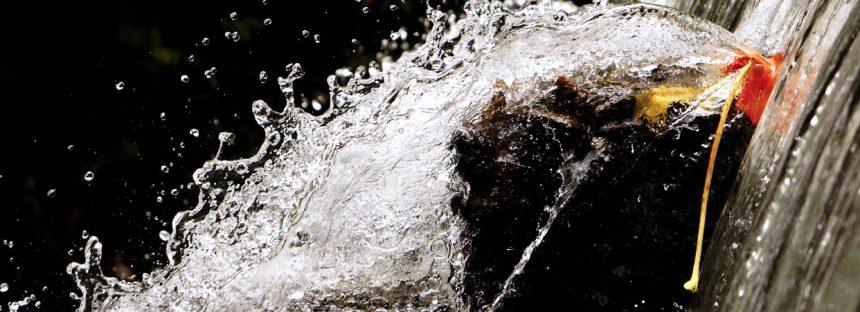 Día de Acción contra las Represas y en Defensa de los Ríos, el Agua y la Vida