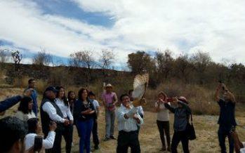 Liberan tres ejemplares de ave de presa en el ecosistema del Cerro de El Chiquihuite, en Puebla