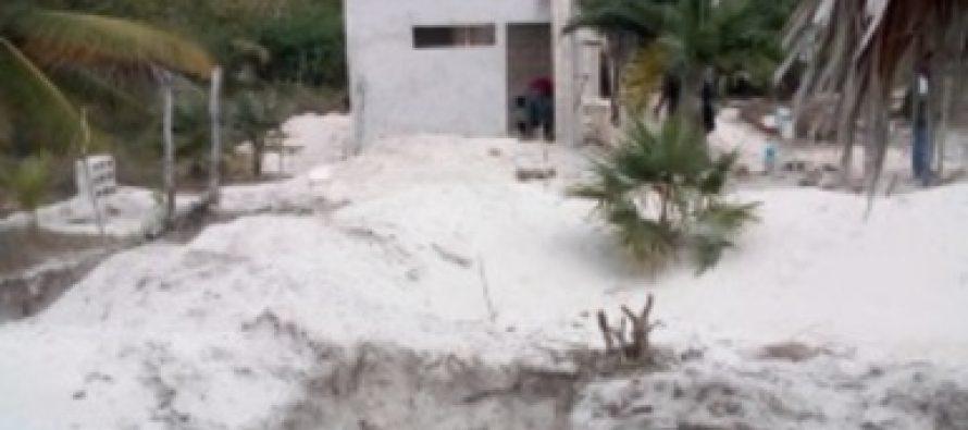 Clausuran obras de construcción de desarrollo inmobiliario en la Reserva de la Biosfera Ría Lagartos, en Yucatán.