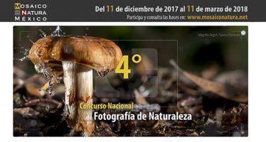 Cuarto Concurso Nacional de Fotografía y Video de Naturaleza