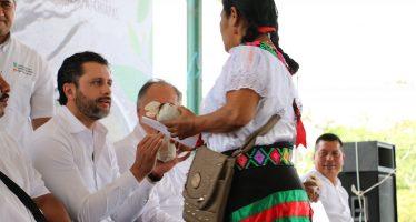 Invierten recursos por 600 millones de pesos para la conservación de la Selva Lacandona