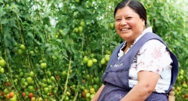 ONU: Activistas rurales y urbanas transforman la vida de las mujeres