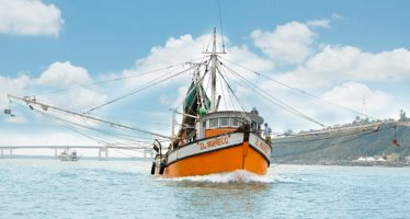 Crece producción pesquera y acuícola nacional a 1.8 millones de toneladas: CONAPESCA