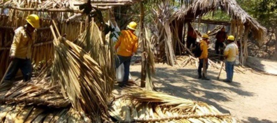 La CONANP recupera 100 hectáreas en la Reserva de la Biosfera La Encrucijada en Chiapas