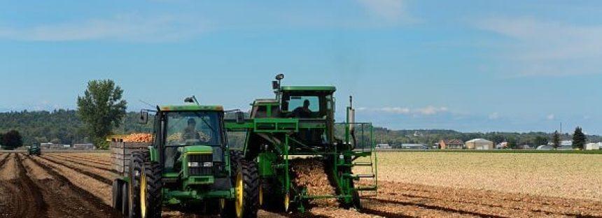 Invertidos en el agro de la región Bajío, más de 219 mdp