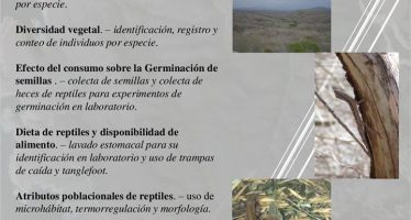UNAM convoca a estudiantes interesados en realizar tesis sobre reptiles