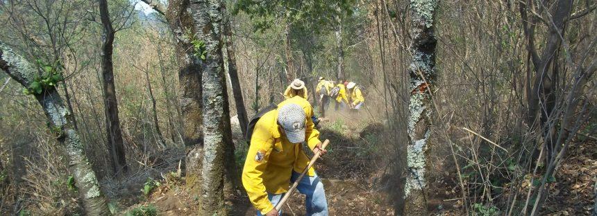 Video: Incendio forestal sobre la autopista México-Morelia