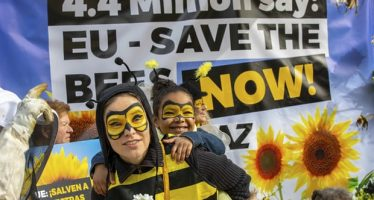 La Unión Europea acuerda la prohibición total de pesticidas que dañan las abejas