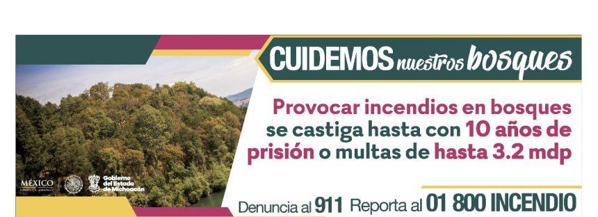 """""""Cuidemos nuestros bosques"""", campaña contra incendios forestales en Michoacán"""