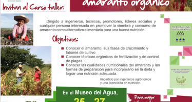 Taller: Siembra y nutrición con amaranto orgánico