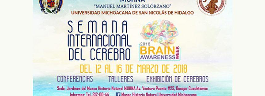 Prepara UMSNH actividades con motivo de la Semana Internacional del Cerebro 2018