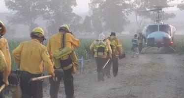 Controlan totalmente incendios forestales en Bosque La Primavera en Guadalajara y en Sierra de Zapalinamé, en Saltillo