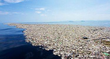 Isla de basura es tres veces más grande que Francia