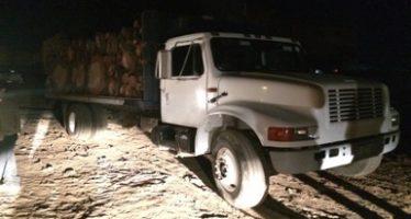 Aseguran 50 metros cúbicos de madera de encino y camiones troceros en Michoacán