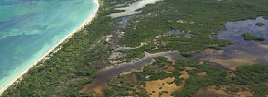 Gobierno de Quintana Roo pone en en riesgo la conservación de Holbox y Yum Balam