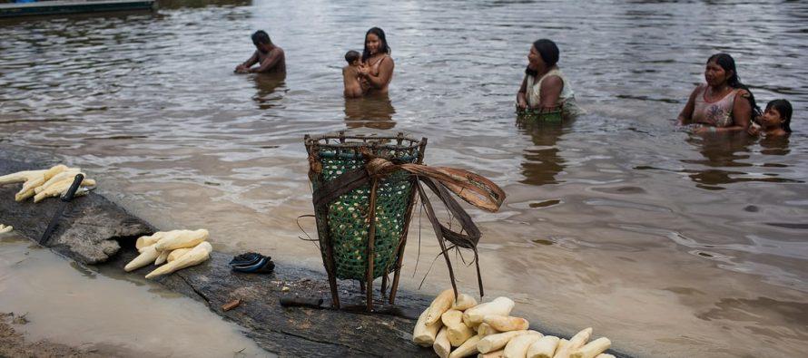 'El río está muerto': ¿es una mina contaminando el agua de la tribu Xikrin de Brasil?