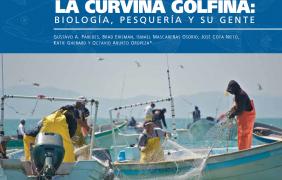 La curvina golfina: biología, pesquería y su gente
