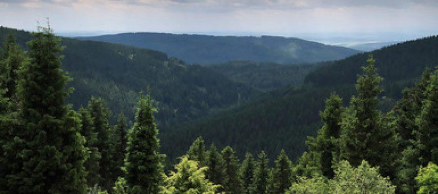 Fin al conflicto agrario-ambiental con la nueva Ley de Desarrollo Forestal Sustentable: Semarnat