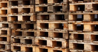 Fija México medidas fitosanitarias para el embalaje de madera utilizado en el comercio internacional