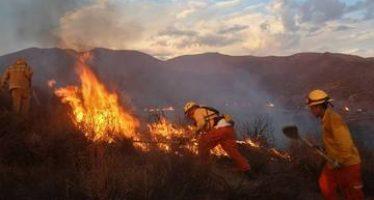 Los incendios pueden ser más devastadores de lo que suponemos