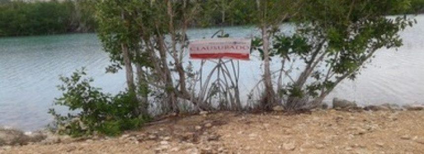 Por daño ambiental clausuran predio en humedal costero, en el municipio de Othón P. Blanco en Quintana Roo