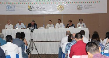 Expertos discuten en Tapachula avances en investigaciones para control de la mosca de la fruta