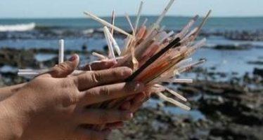 La realidad de los océanos en 2050: Más plásticos que peces